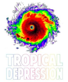 TAMPA BAY TROPICAL DEPRESSION