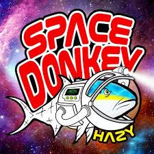 TAMPA BAY SPACE DONKEY